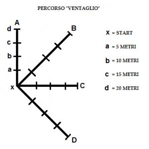 protocollo-1